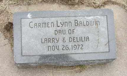 BALDWIN, CARMEN LYNN - Nance County, Nebraska | CARMEN LYNN BALDWIN - Nebraska Gravestone Photos