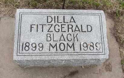 BLACK, DILLA - Nance County, Nebraska | DILLA BLACK - Nebraska Gravestone Photos