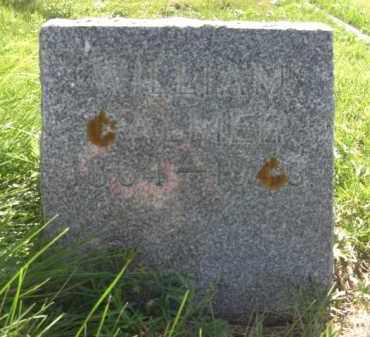 PALMER, WILLIAM - Nance County, Nebraska   WILLIAM PALMER - Nebraska Gravestone Photos