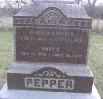 SMITTLE PEPPER, MARY P. - Nance County, Nebraska | MARY P. SMITTLE PEPPER - Nebraska Gravestone Photos