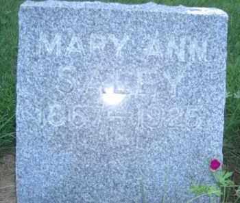 PALMER SALEY, MARY ANN - Nance County, Nebraska | MARY ANN PALMER SALEY - Nebraska Gravestone Photos