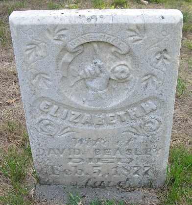BEASLEY, ELIZABETH - Otoe County, Nebraska | ELIZABETH BEASLEY - Nebraska Gravestone Photos