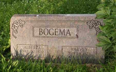 BOGEMA, HARVEY - Otoe County, Nebraska   HARVEY BOGEMA - Nebraska Gravestone Photos