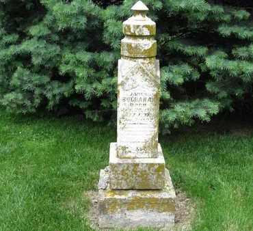 BUCHANAN, JAMES - Otoe County, Nebraska | JAMES BUCHANAN - Nebraska Gravestone Photos
