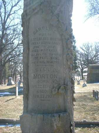 JOY MORTON, CAROLINE A - Otoe County, Nebraska | CAROLINE A JOY MORTON - Nebraska Gravestone Photos
