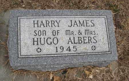 ALBERS, HARRY JAMES - Pierce County, Nebraska | HARRY JAMES ALBERS - Nebraska Gravestone Photos