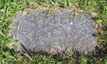 LUCAS, PETER - Pierce County, Nebraska | PETER LUCAS - Nebraska Gravestone Photos