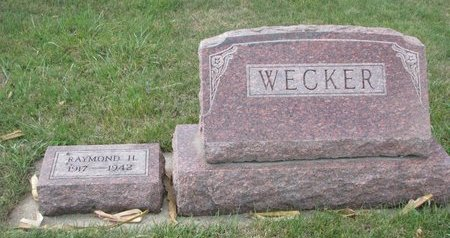 WECKER, *FAMILY PLOT - Pierce County, Nebraska | *FAMILY PLOT WECKER - Nebraska Gravestone Photos