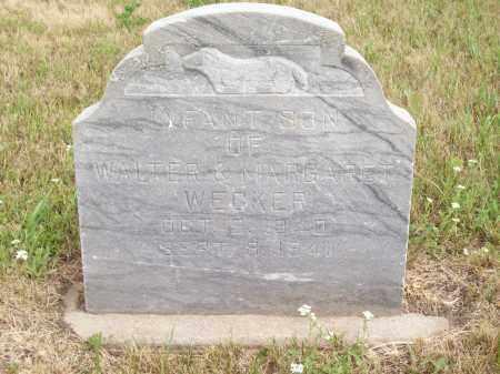 WECKER, LANE DAHL - Pierce County, Nebraska | LANE DAHL WECKER - Nebraska Gravestone Photos