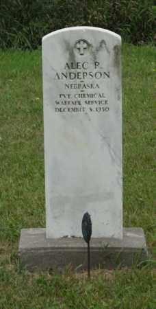 ANDERSON, ALEC R. - Platte County, Nebraska | ALEC R. ANDERSON - Nebraska Gravestone Photos
