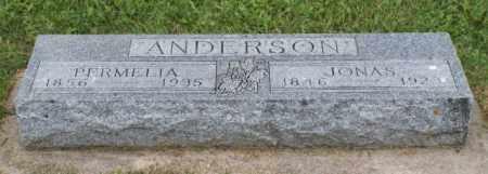 ANDERSON, PERMELIA - Platte County, Nebraska | PERMELIA ANDERSON - Nebraska Gravestone Photos