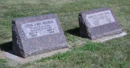 RADECKE WESTRING, MARY - Polk County, Nebraska | MARY RADECKE WESTRING - Nebraska Gravestone Photos