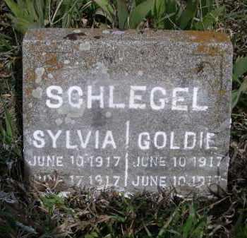 SCHLEGEL, GOLDIE - Red Willow County, Nebraska | GOLDIE SCHLEGEL - Nebraska Gravestone Photos