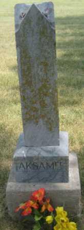 AKSAMIT, FAMILY STONE - Saline County, Nebraska | FAMILY STONE AKSAMIT - Nebraska Gravestone Photos