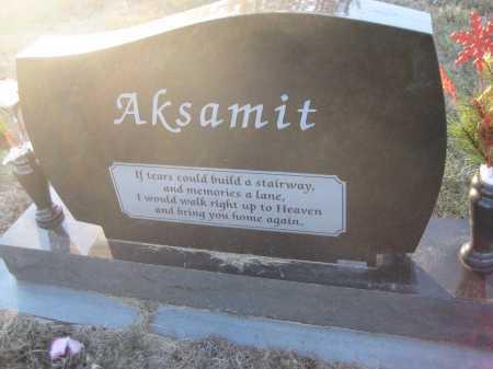 AKSAMIT, MARY ANN - Saline County, Nebraska | MARY ANN AKSAMIT - Nebraska Gravestone Photos