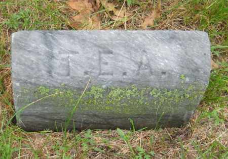 ALLEN, TE - Saline County, Nebraska   TE ALLEN - Nebraska Gravestone Photos