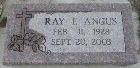 ANGUS, RAY F. - Saline County, Nebraska | RAY F. ANGUS - Nebraska Gravestone Photos
