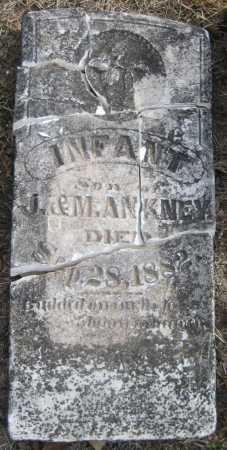 ANKNEY, INFANT - Saline County, Nebraska   INFANT ANKNEY - Nebraska Gravestone Photos