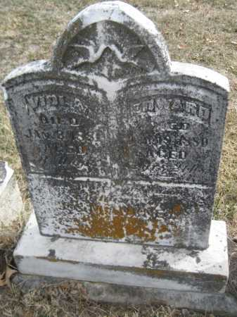 ANKNEY, VIOLA - Saline County, Nebraska | VIOLA ANKNEY - Nebraska Gravestone Photos