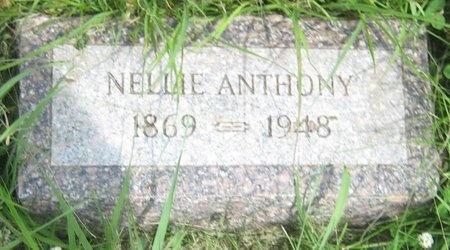 ANTHONY, NELLIE - Saline County, Nebraska | NELLIE ANTHONY - Nebraska Gravestone Photos
