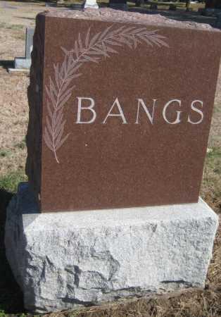 BANGS, FAMILY MONUMENT - Saline County, Nebraska | FAMILY MONUMENT BANGS - Nebraska Gravestone Photos