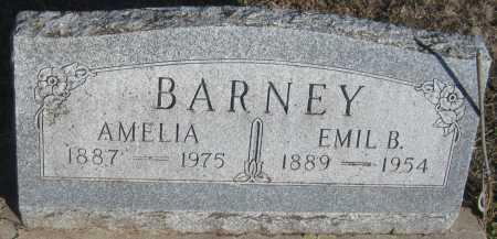 BARNEY, AMELIA - Saline County, Nebraska | AMELIA BARNEY - Nebraska Gravestone Photos