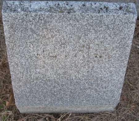 BARNEY, JOHANNA - Saline County, Nebraska | JOHANNA BARNEY - Nebraska Gravestone Photos