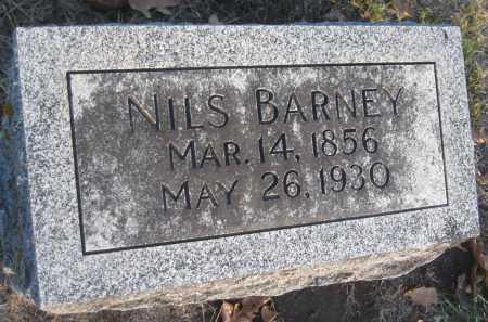 BARNEY, NILS - Saline County, Nebraska   NILS BARNEY - Nebraska Gravestone Photos