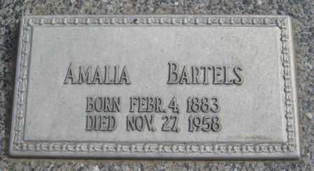 BARTELS, AMALIA - Saline County, Nebraska | AMALIA BARTELS - Nebraska Gravestone Photos