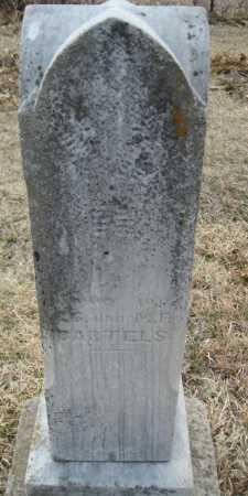 BARTELS, ADOLF - Saline County, Nebraska   ADOLF BARTELS - Nebraska Gravestone Photos