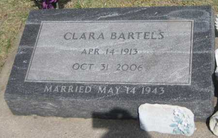 BARTELS, CLARA - Saline County, Nebraska | CLARA BARTELS - Nebraska Gravestone Photos