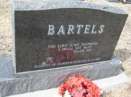 BARTELS, EDWIN - Saline County, Nebraska | EDWIN BARTELS - Nebraska Gravestone Photos