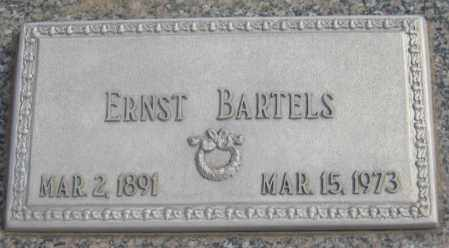 BARTELS, ERNST - Saline County, Nebraska   ERNST BARTELS - Nebraska Gravestone Photos