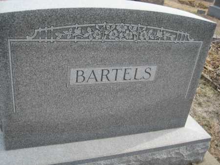 BARTELS, FAMILY MONUMENT - Saline County, Nebraska | FAMILY MONUMENT BARTELS - Nebraska Gravestone Photos