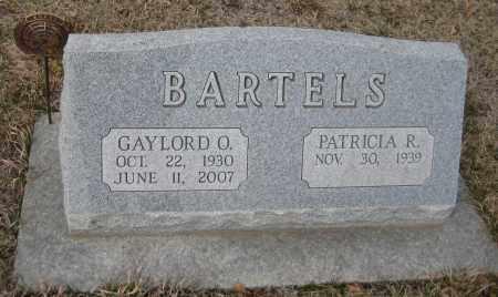 BARTELS, PATRICIA R. - Saline County, Nebraska | PATRICIA R. BARTELS - Nebraska Gravestone Photos
