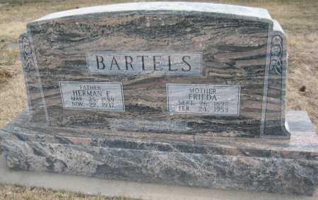 BARTELS, FRIEDA - Saline County, Nebraska | FRIEDA BARTELS - Nebraska Gravestone Photos