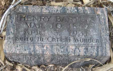 BARTELS, HENRY - Saline County, Nebraska | HENRY BARTELS - Nebraska Gravestone Photos