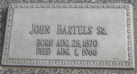 BARTELS, JOHN SR. - Saline County, Nebraska | JOHN SR. BARTELS - Nebraska Gravestone Photos