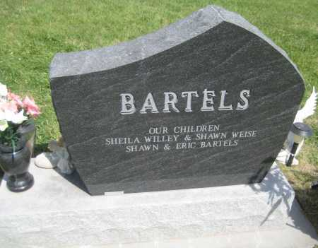 BARTELS, LARRY - Saline County, Nebraska | LARRY BARTELS - Nebraska Gravestone Photos