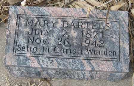 BARTELS, MARY - Saline County, Nebraska | MARY BARTELS - Nebraska Gravestone Photos