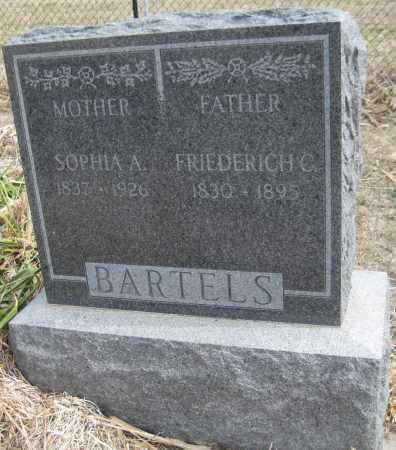 BARTELS, FRIEDERICH C. - Saline County, Nebraska   FRIEDERICH C. BARTELS - Nebraska Gravestone Photos