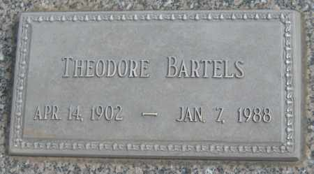BARTELS, THEODORE - Saline County, Nebraska | THEODORE BARTELS - Nebraska Gravestone Photos