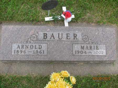 BAUER, MARIE - Saline County, Nebraska | MARIE BAUER - Nebraska Gravestone Photos