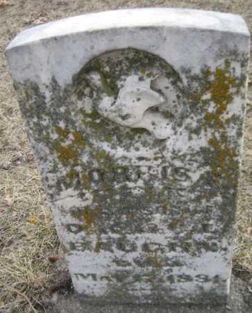 BAUGHN, MORRIS - Saline County, Nebraska | MORRIS BAUGHN - Nebraska Gravestone Photos