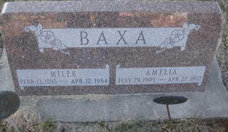 BAXA, AMELIA - Saline County, Nebraska | AMELIA BAXA - Nebraska Gravestone Photos