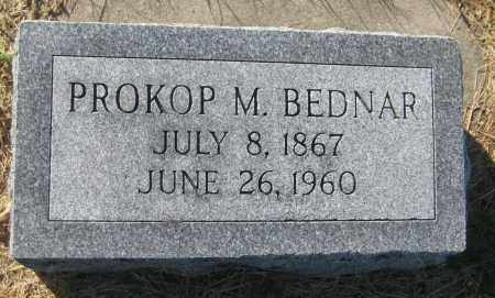 BEDNAR, PROKOP M. - Saline County, Nebraska | PROKOP M. BEDNAR - Nebraska Gravestone Photos