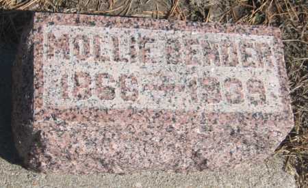 BENDER, MOLLIE - Saline County, Nebraska | MOLLIE BENDER - Nebraska Gravestone Photos
