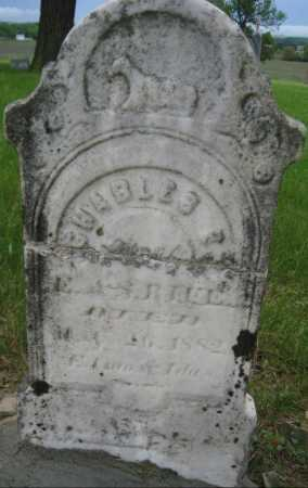 BIEL, CHARLES - Saline County, Nebraska   CHARLES BIEL - Nebraska Gravestone Photos