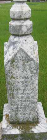 BINGHAM, MARCELLUS - Saline County, Nebraska | MARCELLUS BINGHAM - Nebraska Gravestone Photos