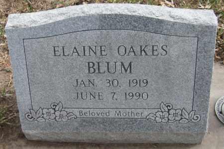 BLUM, ELAINE OAKES - Saline County, Nebraska | ELAINE OAKES BLUM - Nebraska Gravestone Photos